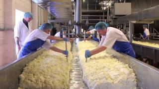 Download Cheese Making Process Video