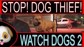 Download STEALING A DOG ON WATCH DOGS 2 - can it be done? Video