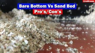 Download Bare Bottom vs Sand Bed in Saltwater Aquarium Video
