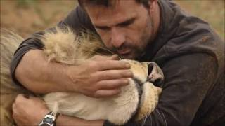 Download Kevin Richardson in Big Cats An Amazing Animal Family Video