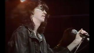 Download Ramones - ″Sheena Is A Punk Rocker″ Video