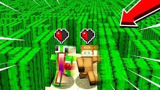 Download 1v1 HALF A HEART CACTUS MAZE! Video