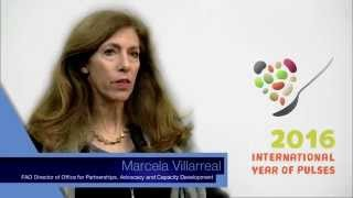Download Marcela Villarreal, FAO Director of OPC on the International Year of Pulses Video
