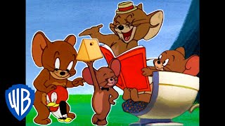 Download Tom & Jerry | Best of Jerry Mouse | Classic Cartoon Compilation | WB Kids Video