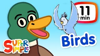 Download The Super Simple Show - Birds | Cartoons For Kids Video