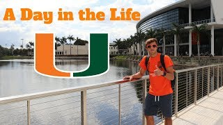 Download A DAY IN THE LIFE AT THE UNIVERSITY OF MIAMI Video
