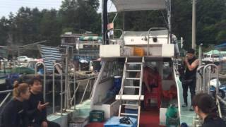 Download 다이빙에 미친 철이 1기팀 Video