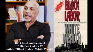 Download Dr Claud Anderson explains how Native American tribes have harmed the African American community Video