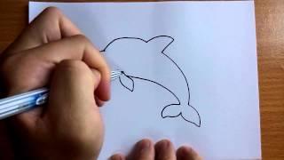 Download วาดการ์ตูนกันเถอะ สอนวาดการ์ตูน ปลาโลมา ง่ายๆ หัดวาดตามได้เลย Video