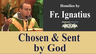 Download Chosen & Sent by God - Jul 15 - Homily - Fr Ignatius Video