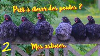 Download Prêt à élever des poules ? Idées, Marquage, Limace, Escargots... Video
