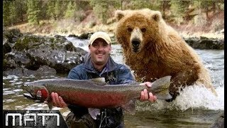 Download NEAR DEATH EXPERIENCE || 7 MOST TERRIFYING CLOSE CALLS WITH WILDLIFE Video