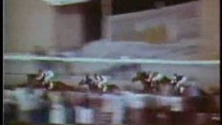 Download SECRETARIAT - 1973 Preakness Stakes + frame-by-frame analysis of time controversy Video