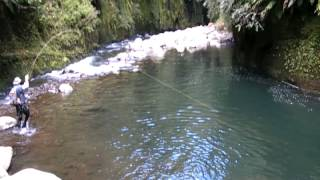 Download Fly fishing in some of the best trout fishing water I have ever seen! Video