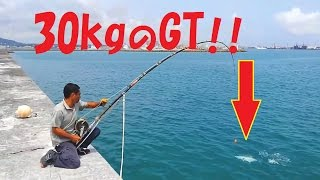 Download 30kgのGTとファイト!Fight with 30 kg of GT! 重磯 珍鲹 Video