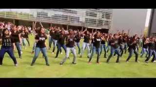 Download IBM Pune Flash mob 2014 official video Video