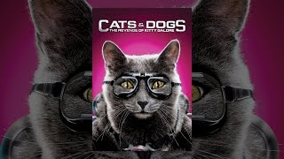 Download Cats & Dogs: The Revenge of Kitty Galore Video