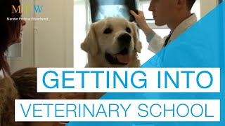 Download Advice On Getting Into Vet School Video