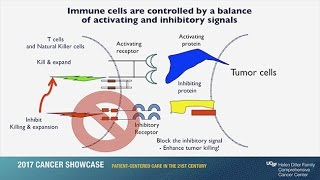 Download Immunotherapy: Unleashing the Body's Natural Defense Systems to Fight Cancer Video