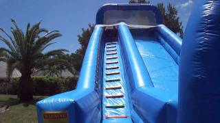 Download Dogs on a Jumbo Water Slide Video