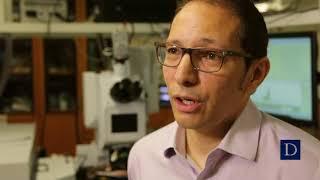 Download Terahertz Metamaterials with Willie Padilla Video