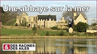 Download Une abbaye sur la mer Video