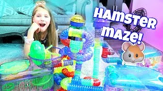 Download AMAZING HAMSTER MAZE! Setting up Hamster Cages and Tubes from CritterTrail Shopping at PetSmart Video