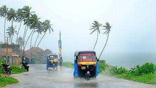 Download Rain in kerala | south india Video