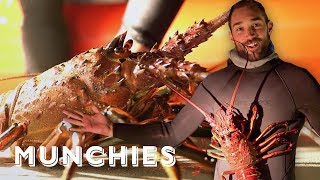 Download MUNCHIES Presents: Lobster Luke Video