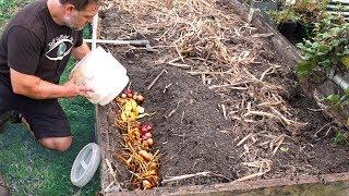 Download What Happens When You Bury Kitchen Scraps in the Garden? Video