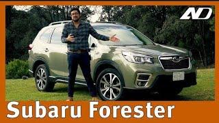 Download Subaru Forester 2019 ⭐ - Casi mi camioneta ideal Video