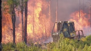 Download Florida Forest Service: Wildfire/Prescribed Fire Video