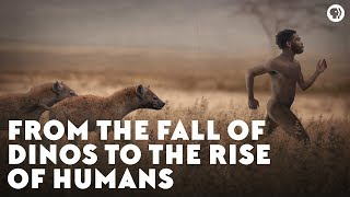 Download From the Fall of Dinos to the Rise of Humans Video