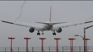 Download Aircraft wing condensation and vortex Video