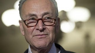 Download Does Chuck Schumer finally get it? Video