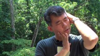 Download Neck Pain - How To Crack Your Neck Video