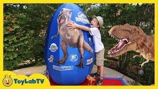 Download Giant Egg Surprise Opening! Jurassic World Dinosaur Toys Kids Video Videos For Kids Video