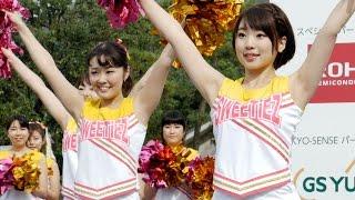 Download 同志社大学チアダンスサークル″SWEETiEZ″ 京都学生祭典 Video