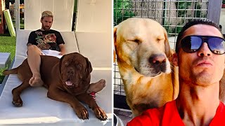 Download 30 Famous Footballers And Their Dogs ▶ Vote for The Best ▶ Video