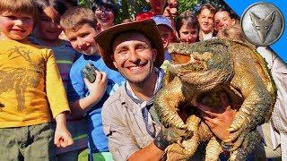 Download Animal Field Trip! Video