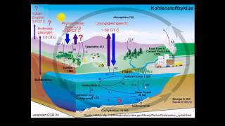 Download Klimawandel-Dichtung und Wahrheit-Science Facts: CO2 Video