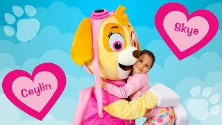 Download Ceylin & Skye - Head Shoulders Knees and Toes - Finger Family - Are You Sleeping Songs Learn Colors Video