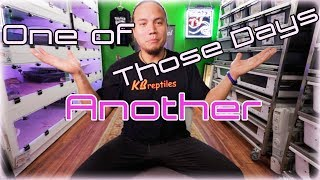 Download Another one of those days Video