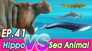 Download [EN] #41 Hungry hippo doesn't like Sea animals (kids education, Collecta figure) [cocostoy] Video