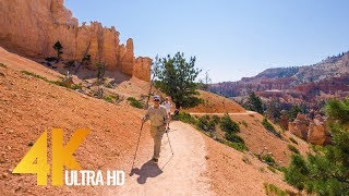 Download Amazing Bryce Canyon Virtual Hike - 4K Footage for Fitness Equipment/Training Simulators - 1.5 HRS Video