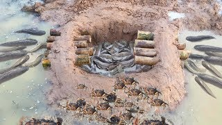 Download New Idea Top 5 Deep hole and Crab Trap 2017 - Build Fish Trap And Crab Trap in Cambodia Video