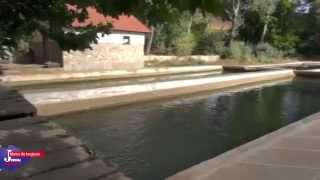 Download Ifrane, la Petite Suisse du Maroc | Le Journal Toulousain | Fall 2012 Video