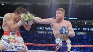 Download The Fight Game: Lookback with Canelo vs. Chavez Jr. (HBO Boxing) Video