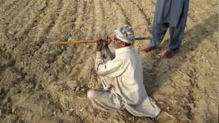 Download WATER FINDER INDICATING UNDERGROUND WATER WITH HIS STICK. Video