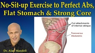 Download The No-Sit-Up Exercise to Perfect Abs, Flat Stomach and Strong Core - Dr Mandell Video